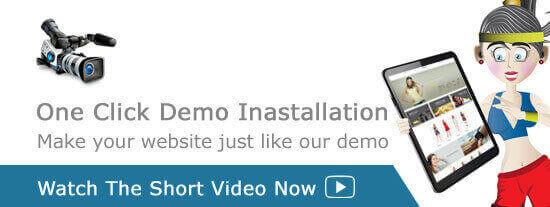 Plumber WordPress Theme – Plumber Pro demo import video